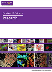 Cover of Research Brochure